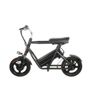 300lbs electric scooter